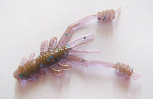 Reins Ring Shrimp