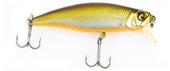 Pontoon 21 Preference Shad